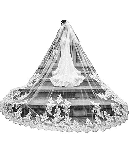 Fenghuavip Cathedral Veils for Brides Wedding 5 Meters 2T Lace Appliques Blusher Veil with Comb